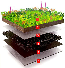 A Living Roof System Explained