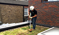 Maintaining a Green or Living Roof
